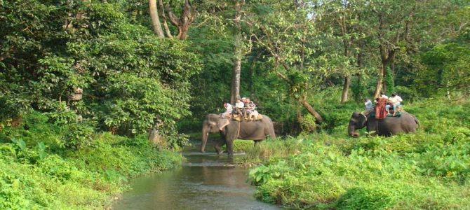 Doars North Bengal Tour Package